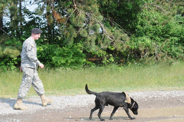 Military working dog handler Sgt. Patrick Pfiester walks with Iiken, a 5-year-old Labrador retriever specialized search dog, during a military working dog explosives detection certification June 9. Pfiester and Iiken are preparing for a deployment to Afghanistan.