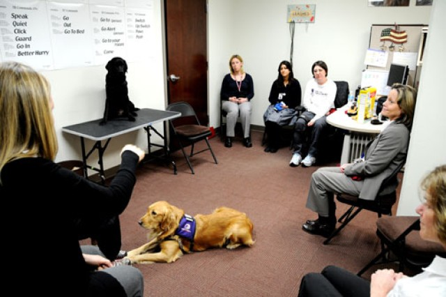 Sgt. Seyward McKinney (third from left at top), participates in a work and education internship called Paws for Purple Hearts at Walter Reed Army Medical Center, Washington, Jan. 20. McKinney, an operating room specialist who is partiallly paralyzed on the right side of her body, says she enjoys the companionship of the dogs and likes doing something for other veterans.