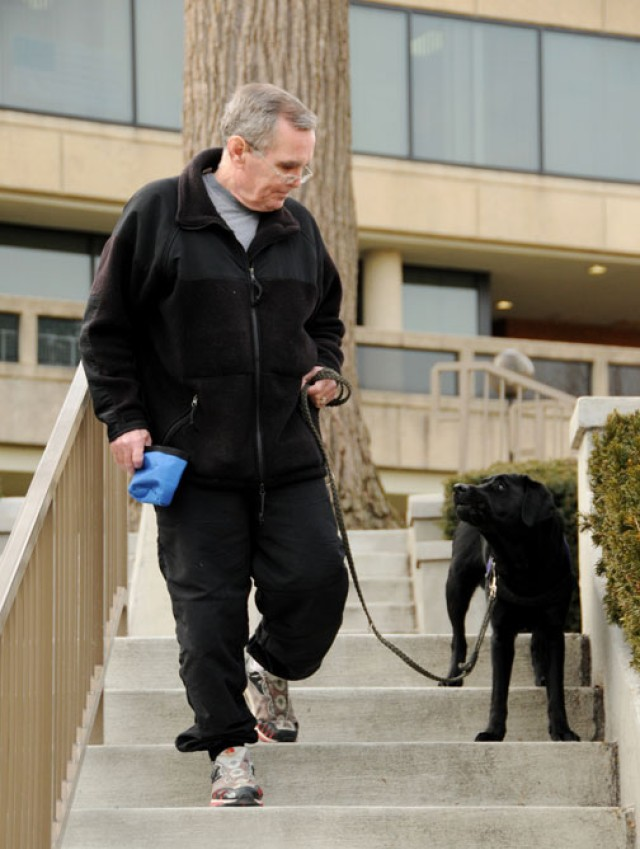 Paws of healing: Service dogs help soothe wounds of war