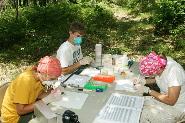 Clockwise from bottom left: Lydia Kramer, an undergraduate student at Michigan State University; Marty Williamson, a volunteer from UW-River Falls; and Isis Kuczaj, a graduate student from Michigan State University, check for ticks on mice/voles at a Fort McCoy site.
