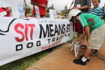 Pets, people have a tail waggin' good time at 'Pets are People Too Expo'