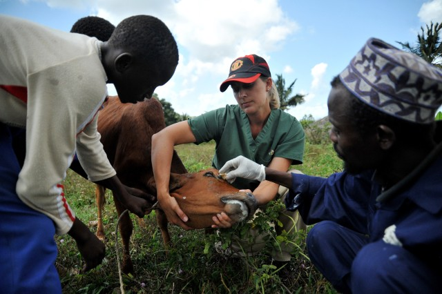 U.S., Zanzibar veterinarians partner to treat livestock