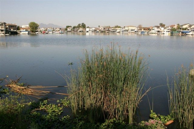 Discovery Bay, shown in this 2006 file photo, is a community in the Sacramento-San Joaquin Delta.