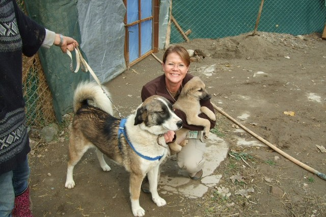 Retired Chief Warrant Officer 3 Julie Sorenson, a maintenance and logistics task order monitor working in Afghanistan as a contractor, holds her new puppy Hesco beside Nakita in Kabul, Afghanistan before the dogs landed at JFK Airport in New York City on Nov. 16. during American Dog Rescue which helps reunite veterans from Afghanistan and Iraq and the four-legged friends they bonded with while deployed in conjunction with Nowzad.