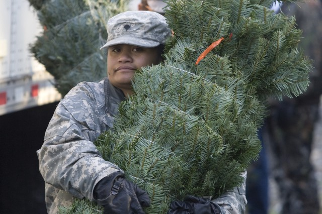 "Spc. Malaia Vaian,  from the 47th CSH, carries a Christmas tree during the 5th annual ""Trees for Troops,"" program on JBLM.  Since 2005, the Christmas SPIRIT foundation's ""Trees For Troops""  donated by tree growers throughout the United States has delivered approximately 17,000 trees each year to 60+ military bases throughout the U.S. and overseas.  This year more than 600 trees were delivered to JBLM."