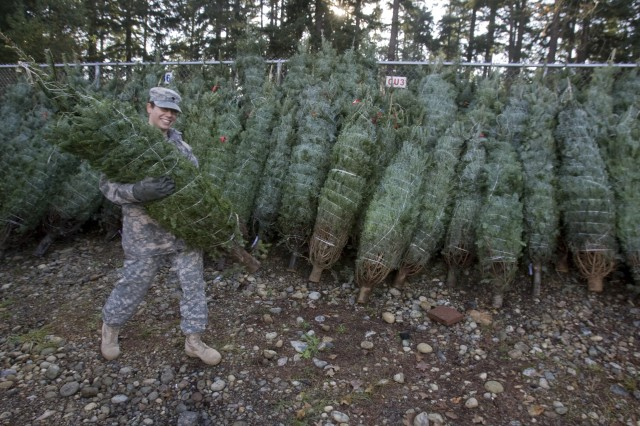 "Spc. Colette Hawks, from the 47th CSH, carries a Christmas tree during the 5th annual ""Trees for Troops,"" program on JBLM.  Since 2005, the Christmas SPIRIT foundation's ""Trees For Troops""  donated by tree growers throughout the United States has delivered approximately 17,000 trees each year to 60+ military bases throughout the U.S. and overseas.  This year more than 600 trees were delivered to JBLM."