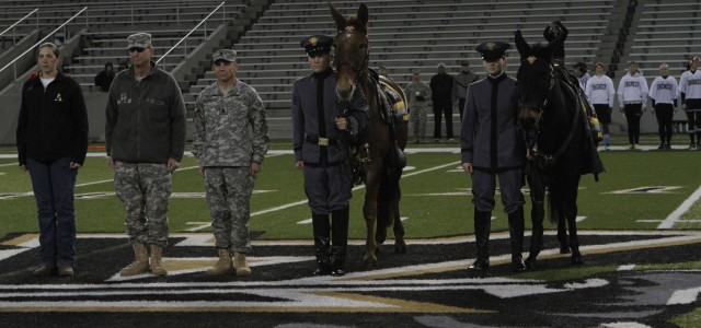 West Point welcomes new Army Mule Mascots