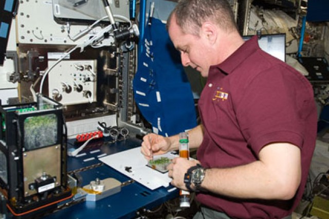 Expedition 22/23 Flight Engineer T.J. Creamer services the advanced plant experiments on the Orbit-Cambium experiment in the Columbus laboratory of the International Space Station.