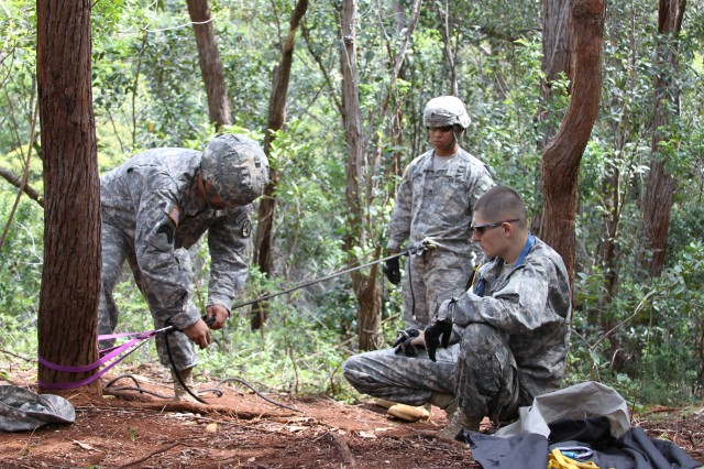 TRIPLER ARMY MEDICAL CENTER, Hawaii -- Sgt. 1st class James Bernas, director, 68W Sustainment Program, Department of Health Education and Training, Tripler Army Medical Center, and Staff Sgt. Andre Williams, instructor, 68W Sustainment Program, DOHET, TAMC, demonstrate different techniques for ropes rescue training behind the hospital, Feb. 24, during TAMC's Medical Education and Demonstration of Individual Competence course, here.