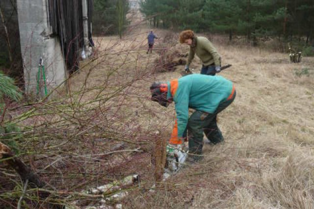 A team of volunteers clear away brush and other debris nestled near an old shooting range on Coleman Barracks in Mannheim Feb. 27. The group cleaned up the area and used bushes and small trees to create a safe nesting area for the owls that now occupy the abandoned range.