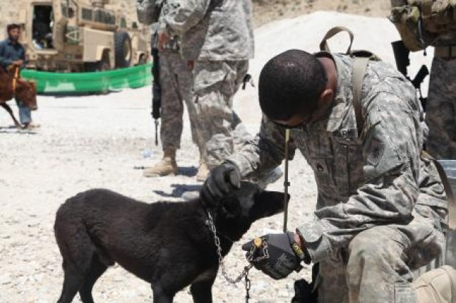 In Afghanistan, Soldiers come into contact with feral animals frequently. Upon redployment, First Army Division East screens all reserve-component Soldiers for the rabies virus.