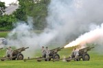 Live fire demo to close Armed Forces Week