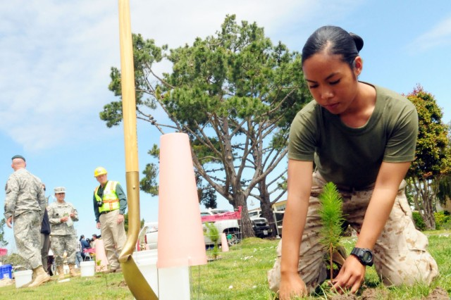 PRESIDIO OF MONTEREY, Calif. - Marine Corps Detachment Private 1st Class Kristine Plata plants a tree on Presidio grounds in honor of Earth Day.
