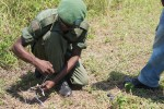 'Screaming Eagle' Soldiers oversee demining in Democratic Republic of the Congo