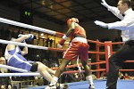 Boxers entertain at USAG Bamberg, Germany