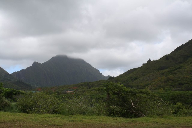 The Department of Land and Natural Resources and the U.S. Army Corps of Engineers broke ground today on the Kawainui Marsh Environmental Restoration Project in Kailua, O'ahu. The project will increase populations of endangered waterfowl, create scenic open space, reduce upland runoff to coastal reefs and remove invasive weeds from the marsh.