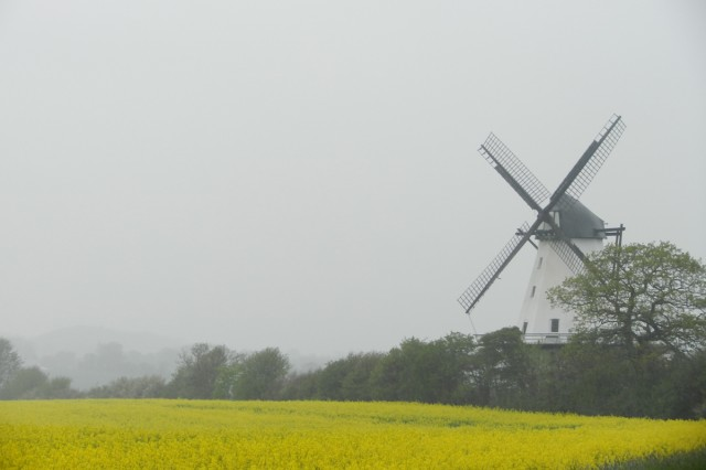 .  A wooden windmill looms in the mist.