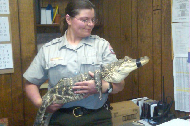 Corps Student Ranger Christina Fox holds Herbert, an alligator she cares for as part of her work with West Virginia Snakes. Herbert came to Fox after outgrowing his welcome with previous owners who purchased him at a retail pet store.
