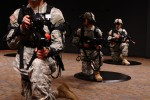 Paratroopers take knee in virtual world