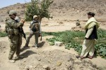 Making money without marijuana: Afghan farmers enabled to grow legal crops