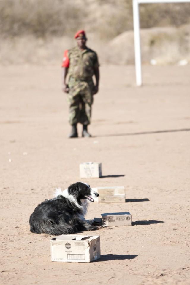 US vets teach K-9 care to BDF military police