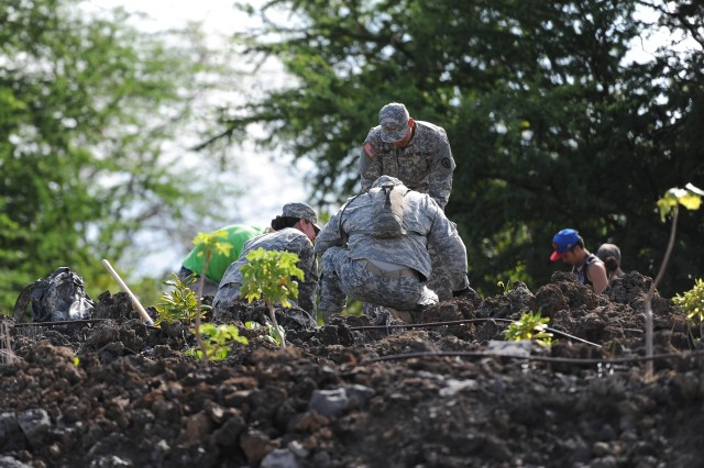 Soldiers from 1st Battalion 21st Infantry Regiment spent Saturday morning planting Native Hawaiian plants on a hillside overlooking the West Hawaii Veterans Cemetery on the Big Island.