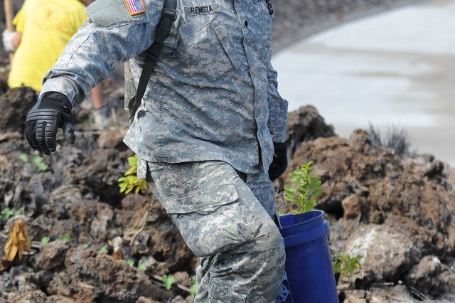 Spc. Joshua Remza, 1-21 battalion S-2, was one of the 15 Gimlet Soldiers who volunteered to plant Native Hawaiian plants at the West Hawaii Veterans Cemetery on the Big Island Sept. 29.