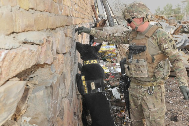 Sgt. Adam Serella, a narcotics patrol detector dog handler with me 3rd Infantry Division, ensures his dog, Nero, inspects every level of a compound during Operation Clean Sweep conducted in districts throughout Kandahar City, Afghanistan, Oct. 3, 2012.