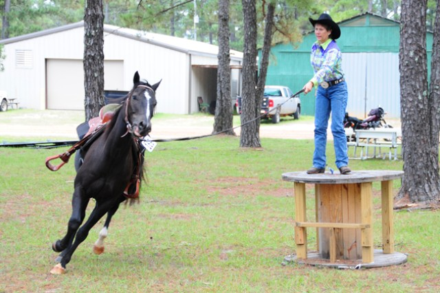 Michelle Mitchell, who finished third in the 2012 American Horsemen Challenge Association Finals, takes her horse through an obstacle at the Fort Rucker Riding Stables Oct. 5.