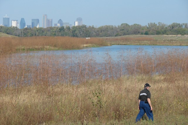 A public tour Saturday of this urban wetland habitat, built by the U.S. Army Corps of Engineers Fort Worth District, demonstrated how it can thrive just five miles from downtown Dallas. Twenty-nine native Texas aquatics were planted in the wetlands to attract waterfowl along the Central Flyway migration route that passes through Dallas, and Dallas Audubon's Trinity Bird Count includes the wetlands when it does its quarterly census.