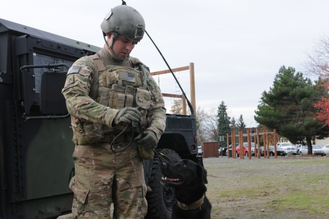 Sgt. David Varkett and Nouschka, a military working dog, take their places for the 95th Military Police Detachment activation ceremony, Nov. , 2012, at Joint Base Lewis-McChord, Wash. The 95th MP Detachment is a unit made up of military working dogs and their handlers.