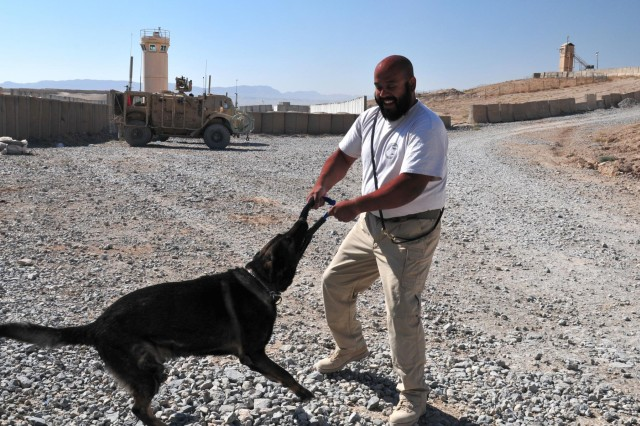Tony Villalobos, an American K-9 Detection Services handler and acting trainer at Forward Operating Base Lagman, Afghanistan, takes his partner Basco out for play time, Nov. 4, 2012.  AMK9 explosives and narcotics dogs are an important part of the force protection measures employed on the base.  The stressful nature of the job necessitates regular down time for the dogs and their handlers to relax.  (U.S. Army photo by Sgt. Lori Bilyou)