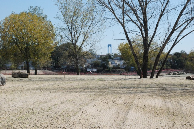 Recently seeded upland meadow at Soundview Park Ecosystem Restoration Project, looking east towards Whitestone Bridge.