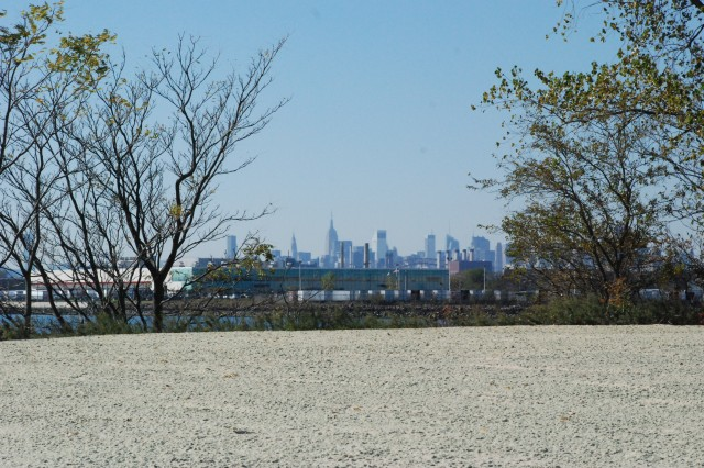 New York City skyline as seen from the upland meadow area.