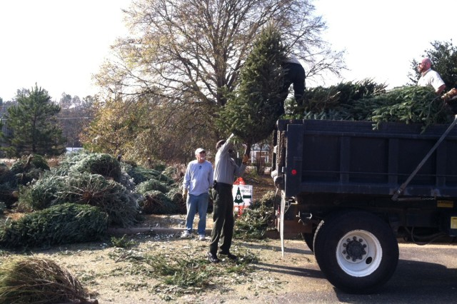 Officials with the U.S. Army Corps of Engineers Savannah District and volunteers load used Christmas trees to be transported to J. Strom Thurmond Lake, Jan. 9, 2013.