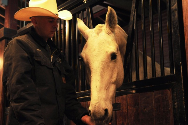 Soldier's quick reaction saves horse from serious injury
