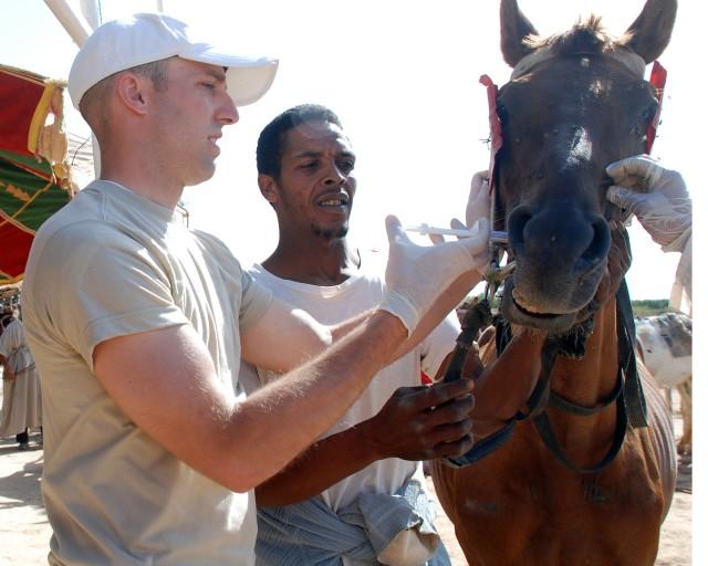 Guardsman vaccinates horse in Africa