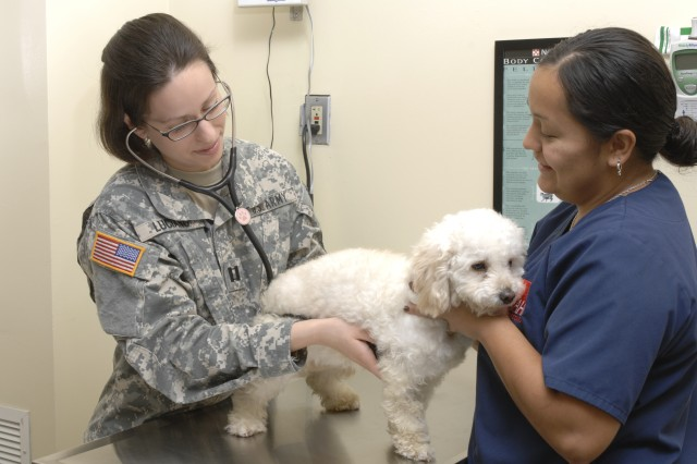 Renovations to the Fort Shafter and Schofield Barracks veterinary treatment facilities, scheduled for this calendar year, will improve flow and increase access to care.