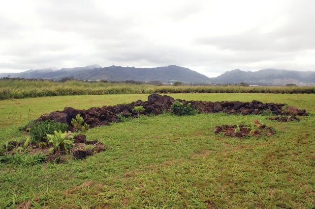The area of Waialua, located near Schofield Barracks on the Wahiawa Plateau, is home to many sites of significant importance to native Hawaiians, including Kukaniloko, where many of Oahu's chiefs were born. Today, the royal birthsite is marked by 180 stones, including remnants of heiau (temples) and birthing stones, covering approximately 0.5 acres.