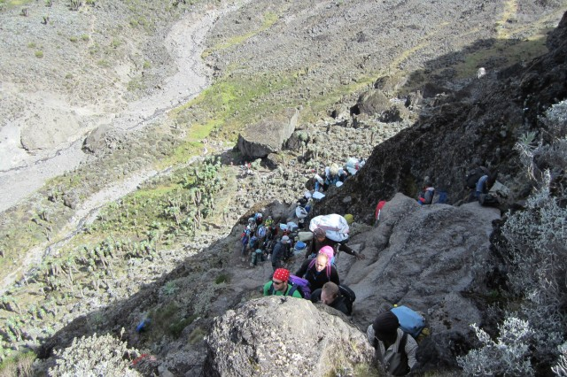 Bev Stotz joins fellow hikers ascending the Barranco Wall during a climb of Mount Kilimanjaro in January.