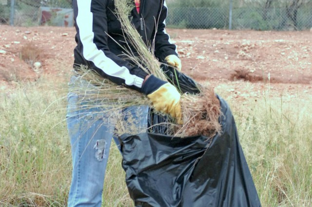 "Spc. Deira Taylor, a supply specialist assigned to Headquarters and Headquarters Company, 86th Expeditionary Signal Battalion, 15th Sustainment Brigade, disposes of weeds, trash and other debris during a Fort Bliss Army Volunteer Corps project at the El Paso Humane Society, Sept. 8. Taylor, a native of St. Louis, Miss., participated in the clean-up project alongside other service members from the ""Wagonmaster"" Brigade. As part of the 9/11 National Day of Service and Remembrance, the Army Volunteer Corps coordinated 20 different projects that focused on giving back and bettering the El Paso, Texas community."