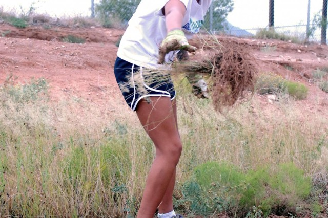 Sgt. Desiree Hernandez, a supply sergeant and squad leader assigned to Headquarters and Headquarters Company, 86th Expeditionary Signal Battalion, 15th Sustainment Brigade, tosses weeds, trash and other debris into a pile for future disposal during a Fort Bliss Army Volunteer Corps project at the El Paso Humane Society, Sept. 8. Hernandez, a native of Terrebonne, Ore., recruited Soldiers from her unit for the event.U.S. Army photo by: Sgt. Terence Ewings, 24th Press Camp Headquarters.
