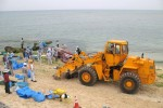 Beached whale discovered off Okinawan coast at Torii Station