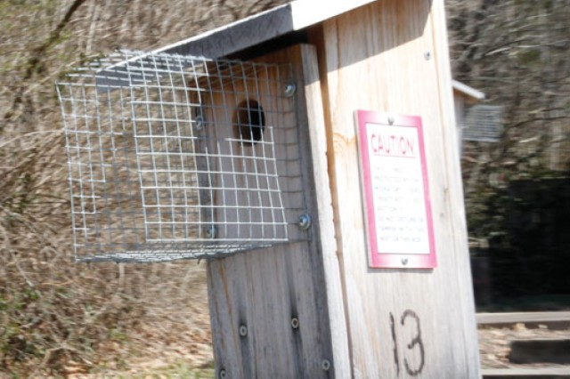 Volunteers are needed to monitor this and other bird boxes, located throughout Fort Belvoir. There are bluebird boxes, house wren boxes and Prothonotary warbler boxes, in which the birds use to build nests and hatch eggs. For information on volunteering to monitor one of these boxes see the story or call (703) 805-3969.