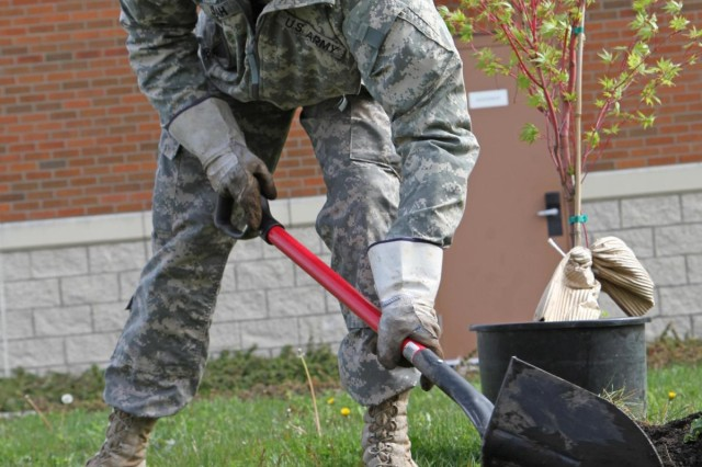 """A soldier from the 508th Military Police Battalion prepares to plant a tree at the John D. """"Bud"""" Hawk Education Center on Joint Base Lewis-McChord, Wash., April 17, 2013. The tree planting session was just one of the events sponsored by JBLM in support of Earth Day. (U.S. Army photo by Sgt. Jennifer Spradlin, 19th Public Affairs Detachment)"""