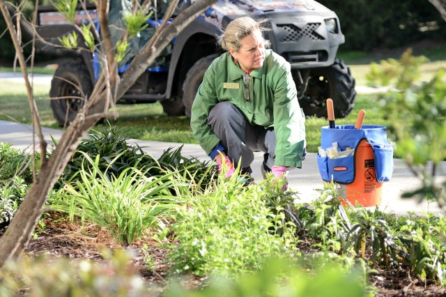 Melody McMahon, a volunteer and master gardener, cleans out one of the flower beds in front of the Warrior and Family Support Center at JBSA-Fort Sam Houston.