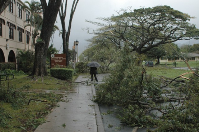 Members of the 84th Engineer Battalion clear trees and debris from a housing area on Schofield Barracks after a storm, Dec. 5, 2007. The storm downed trees and power lines leaving many without electricity for days.