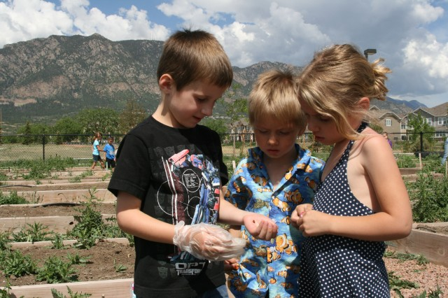 FORT CARSON, Colo. -- Nathan Bourque, 5, shows a ladybug to James Garner, 4, and Kayleah Garner, 5, at Balfour Beatty Communities' Grow with Me Garden event June 7.