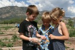 Fort Carson Families show off green thumbs