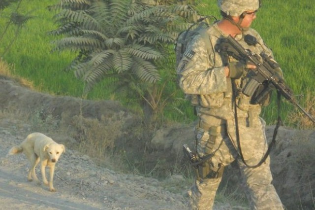 Sgt. Shayne Merritt is followed by Whitey while on patrol in Afghanistan. Merritt helped nurse the sick dog back to health during his 2010 deployment where he earned the Combat Medical Badge. (U.S. Army Photo)